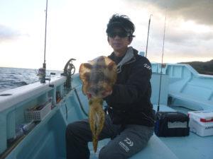アオリイカ ティップランにて よく釣れました